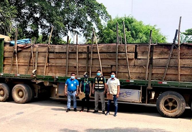 13 mil pies tablares de madera ilegal fueron incautados en región San Martin