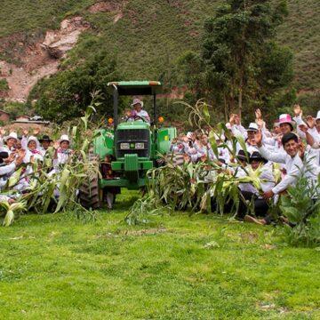 Minagri financia la mejora de productores de maíz en Cusco