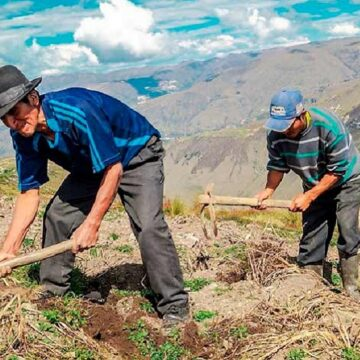 Dirección Regional de Agricultura promueve acceso al crédito agropecuario a través de Agrobanco
