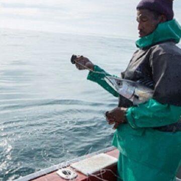Ministro del Ambiente indico que protección áreas marinas permitirá la recuperación de los océanos