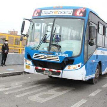 ATU suspenderá bus de empresa ETUCHISA por colisión con baranda de paradero en  San Martín de Porres