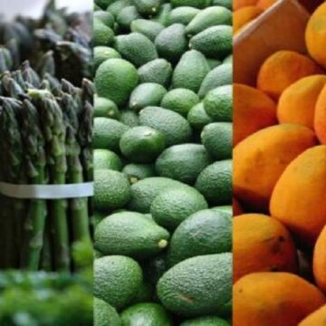 Agroexportaciones crecen 17% y llegan a US$ 4,982 millones en los primeros ocho meses del año